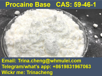 100% pass custom ship procaine powder from China factory CAS:59-46-1
